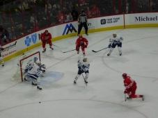 Leafs 7